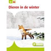 Junior Informatie: Dieren in de winter - Geert- -Jan Roebers