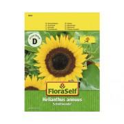 FloraSelf seminte de floarea soarelui Schnittwunder