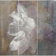 Paradyż Manteia colour panel A 60x60