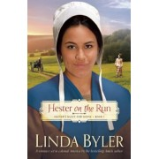 Hester on the Run: Hester's Hunt for Home, Book One, Paperback
