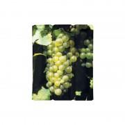 Vacuvin Rapid ice vin raisin blanc