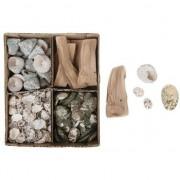 Merkloos Schelpen/schelpjes/houtjes mix in box naturel 20 x 17 cm