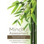 Mindful Assessment: The 6 Essential Fluencies of Innovative Learning (Teaching 21sr Century Skills to Modern Learners), Paperback