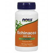 Now Echinacea 400 mg 100 db