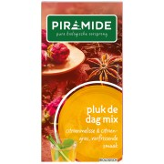Piramide Thee Pluk de Dag Mix