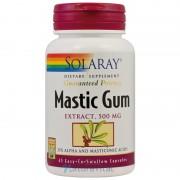 Mastic Gum 45 capsule