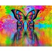 Gaira Malování podle čísel Motýl M992170