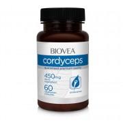 Cordyceps 450mg 60 Capsule
