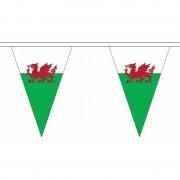 Geen Polyester vlaggenlijn Wales 5 meter