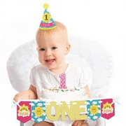 You are My Sunshine - 1st Birthday Girl Smash Cake Decorating Kit - High Chair Decorations
