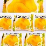 HARMONY MANGO FRUITY SOAP (Pack Of 6 - 75 grams)