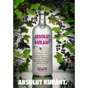 Vodka Absolut Kurant 0.7L