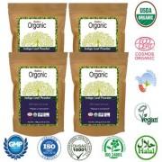 Radico 100 Organic Indigo Leaf Powder Hair Color - 100gm Pack of 4
