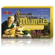 Extract de rasina mumie 100% natural-tablete 30tbl DAMAR