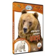 Discovery - Afla totul despre ursi (DVD)