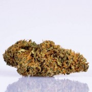 CBD Blüten Kreisky 30g (3dag) -30% RABATT