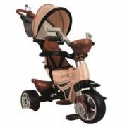 Tricicleta Injusa Body Max 2 in 1 Maro