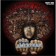 Erykah Badu - New Amerykah Part One (4th World War) (0602517621879) (1 CD)
