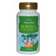 Feuille de Moringa oleifera (poudre) BIO- 90 gélules - 450 mg