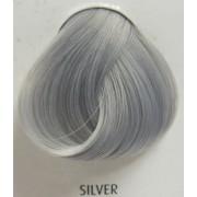 culoare la par INDICATII - Argint