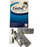 Cestal Plus pentru caini - blister cu 2 comprimate masticabile