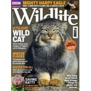 Tidningen BBC Wildlife 13 nummer