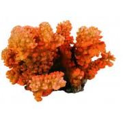 Decor Coral Mic 12cm 8838