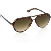 Pepe Jeans Aviator Sunglasses(Brown)