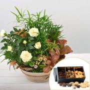 Interflora Bouquet Coin de paradis et ses amandes au chocolat
