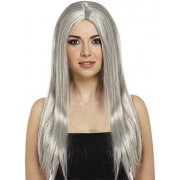 Henbrandt Witches Witch Wig Grey 65Cm Long