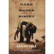 Dark Water Rising, Paperback