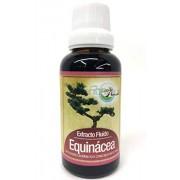 Green House Equinácea Extracto Fluido 30 Ml (Antigripal)