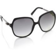Life Over-sized Sunglasses(Blue)