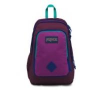 JanSport Super Sneak 22 L Laptop Backpack(Multicolor)