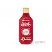 Garnier Botanic Therapy Cranberry & Argan Oil šampon , 400 ml