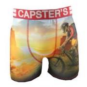 Boxer Capster's Official motif Colorado
