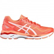 Asics GEL KAYANO 23