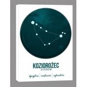 Znak zodiaku, Koziorożec - obraz na płótnie