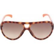 Calvin Klein Oval Sunglasses(Grey)