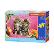 Puzzle Pisicuta pe scaun, 120 piese