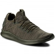 Обувки PUMA - Ignite Flash EvoKnit 190508 04 Forest Night/Gray/Black