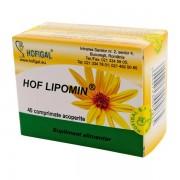 Hof Lipomin Hofigal 40tb