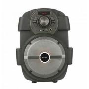 Boxa portabila Bluetooth KTS-1030 Karaoke , radio ,mp3 , telecomanda si microfon inclus