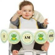 Froggy Frog High Chair Birthday Banner