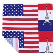 LUOEM American Flag Tablecloth with Stars Stripes Modern Simple Country Hotel Dining Room Kitchen Rectangular Table Cover - Size 70X70CM (American Star Flag)