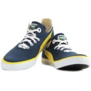 Puma Limnos CAT 3 DP Closed Shoes(Blue, Yellow)
