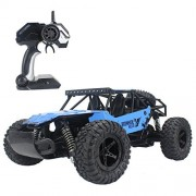 Fistone RC Car 2.4G High Speed Racing Cars 1:16 Iron Radio Control Monster Truck Rock Off-Road Vehicle Buggy Hobby Electronic Game Toys Model (Blue)