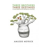 Three Brothers - Three Destinies. A novel based on and inspired by a true story, Paperback/Amlodd Meyrick