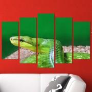 Декоративeн панел за стена с екзотичен зоо мотив - зелена мамба Vivid Home