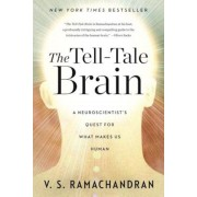 The Tell-Tale Brain: A Neuroscientist's Quest for What Makes Us Human, Paperback